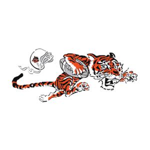 Cincinnati Bengals 1968-1969 logo