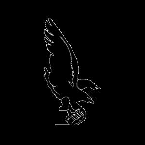 Phil-Pitt Steagles 1943 logo